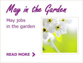 May Tips for your Garden