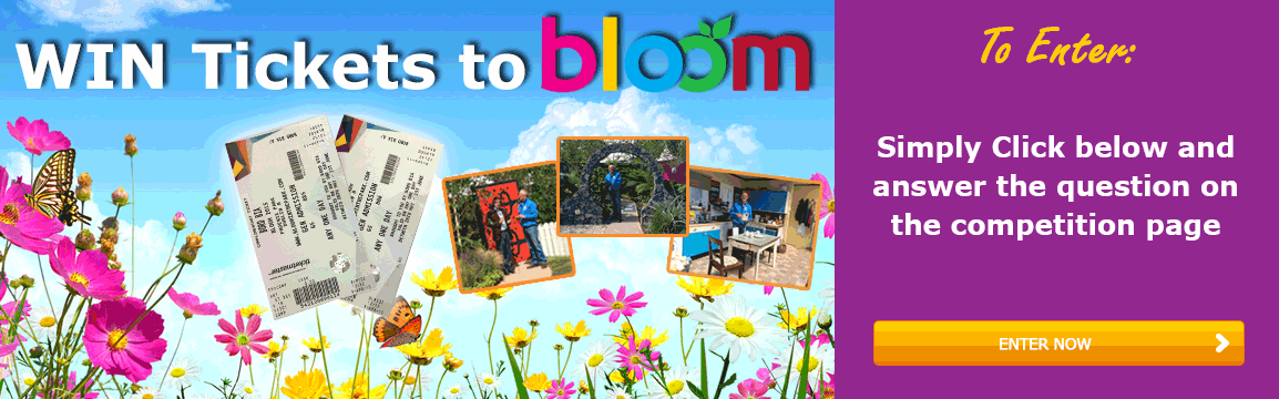 Bloom 2017 Competition