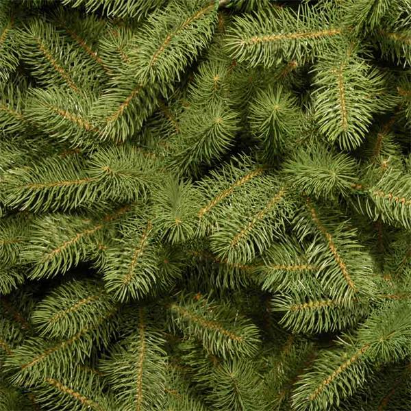 7½ft Bayberry Spruce Artificial Christmas Tree